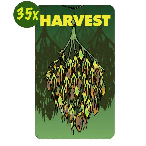 harvest-kaarten-dealerscup
